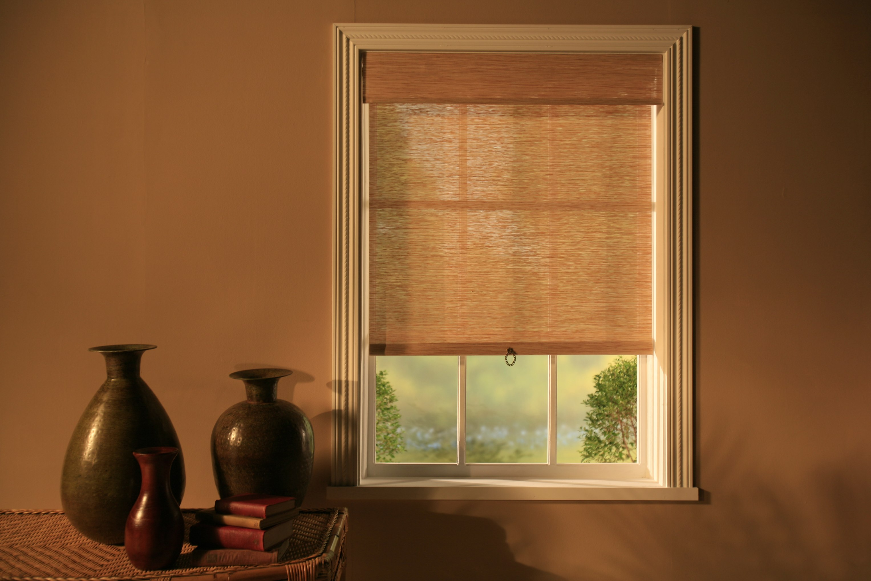 Spring Loaded Roller Shades Jacoby Company